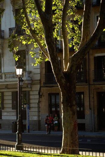 2016-07-13-MADRID-033